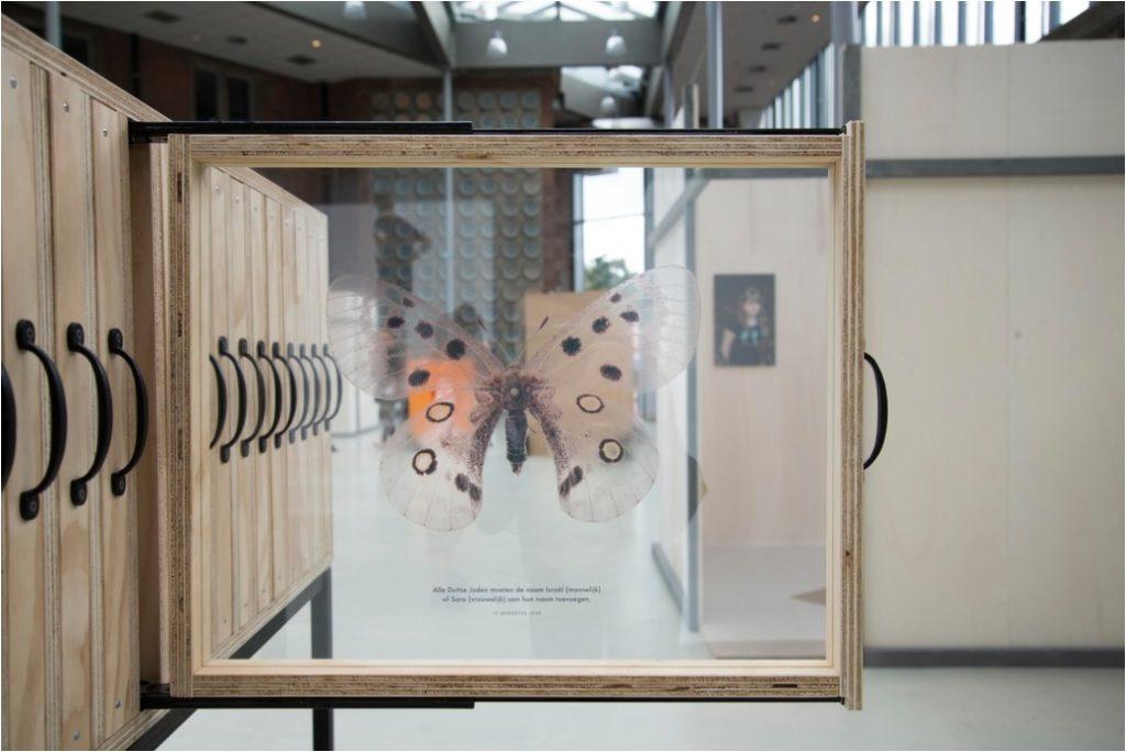 vlinder geprint op glas